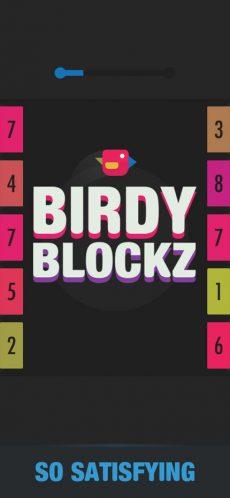 Birdy Blockz 4
